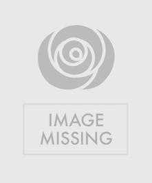 This bubble vase filled with orange lilies, hot pink gerbera daisies and yellow roses is bursting with warm wishes.
