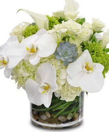 Hydrangeas, succulents, roses, and calla lilies in a clear round vase.