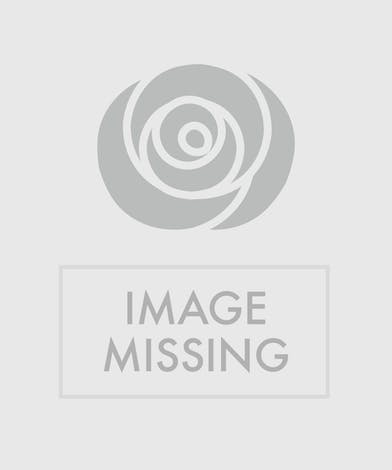 Happy Birthday Flowers Trumbull, Shelton, CT - Color me happy!