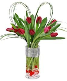Gorgeous Dutch Tulips