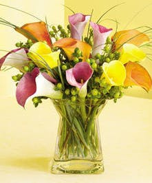 Sophisticated Calla Lily Bouquet