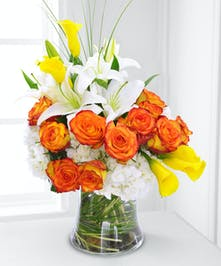 Orange Roses Trumbull & Shelton (CT) City Line Florist