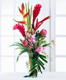 Featuring ginger, anthirium, orchids & more!