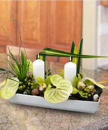 Featuring soothing green anthirium, orchids & more