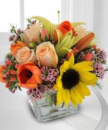Autumn Color Cube Floral Bouquet Trumbull & Shelton Connecticut