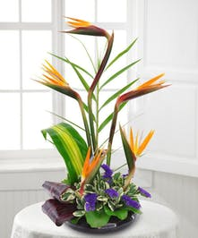 Whisk them away to the Hawaiian tropics with this extraordinary tropical bouquet.