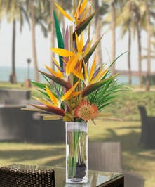 Beautiful tropical blooms