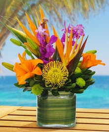 The orange lilies, mokara orchids, green kermit button mums and birds of paradise put out warm tropical vibes as this arrangement will brighten up any room.