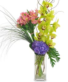 When the mother in your life deserves it all! These orchids, hydrangeas and alstroemeria will make her feel appreciated and loved.