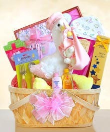 Special Stork Delivery Baby Girl BasketG