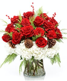 Bridgeport Snowcapped Roses Holiday Flowers
