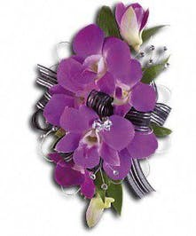 Purple dendrobium orchids and Italian ruscus. Approximately 4 W x 6 3/4 H