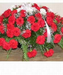 Available in any color carnations