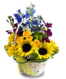 Vibrant sunflowers are the focal point of this countryside garden bouquet in a basket. Delphinium, daisies, spray roses and stock add color and flair.
