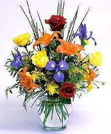 Striking colorful roses, lilies, iris & more!
