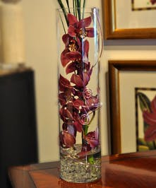 Feng Shui Design of Cymbidium Orchids