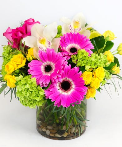 Vibrant mix of flowers created in a glass cylinder. Featuring Cymbidium Orchids, Hydrangeas, Gerberas and Roses.