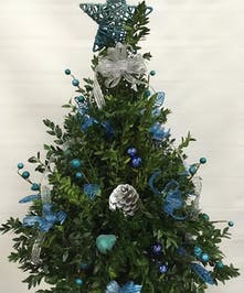 Blue & Silver Boxwood Tree