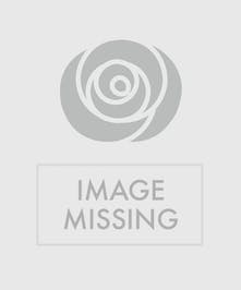 Send these bright colored roses to your Valentine!