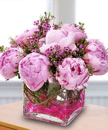 These pink peonies are arranged together in a square glass vase to form the most breathtaking display.