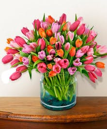 Glorious pink and orange tulips.