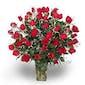 48 Roses