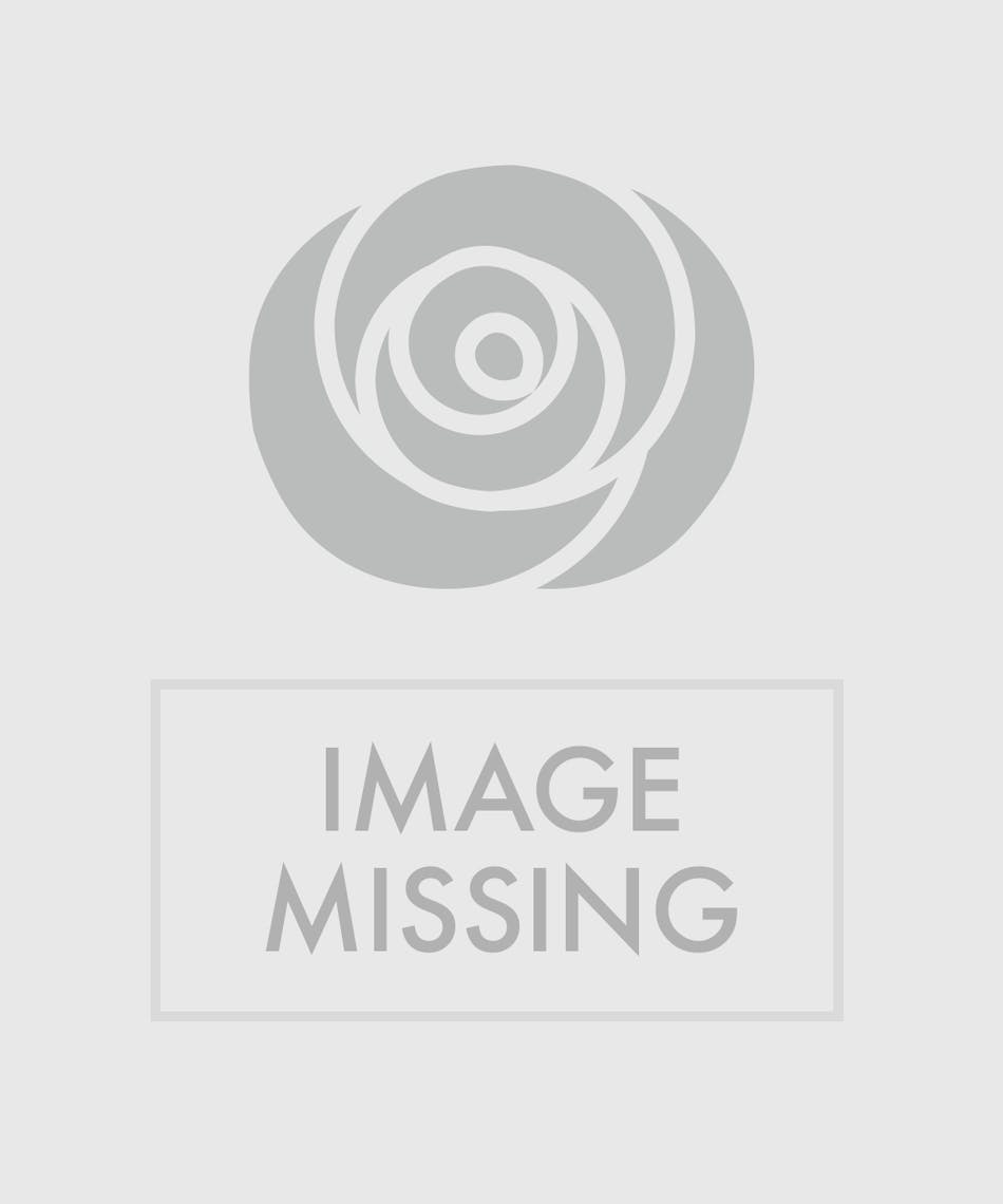 Happy Birthday Flowers Trumbull Shelton Ct Color Me Happy