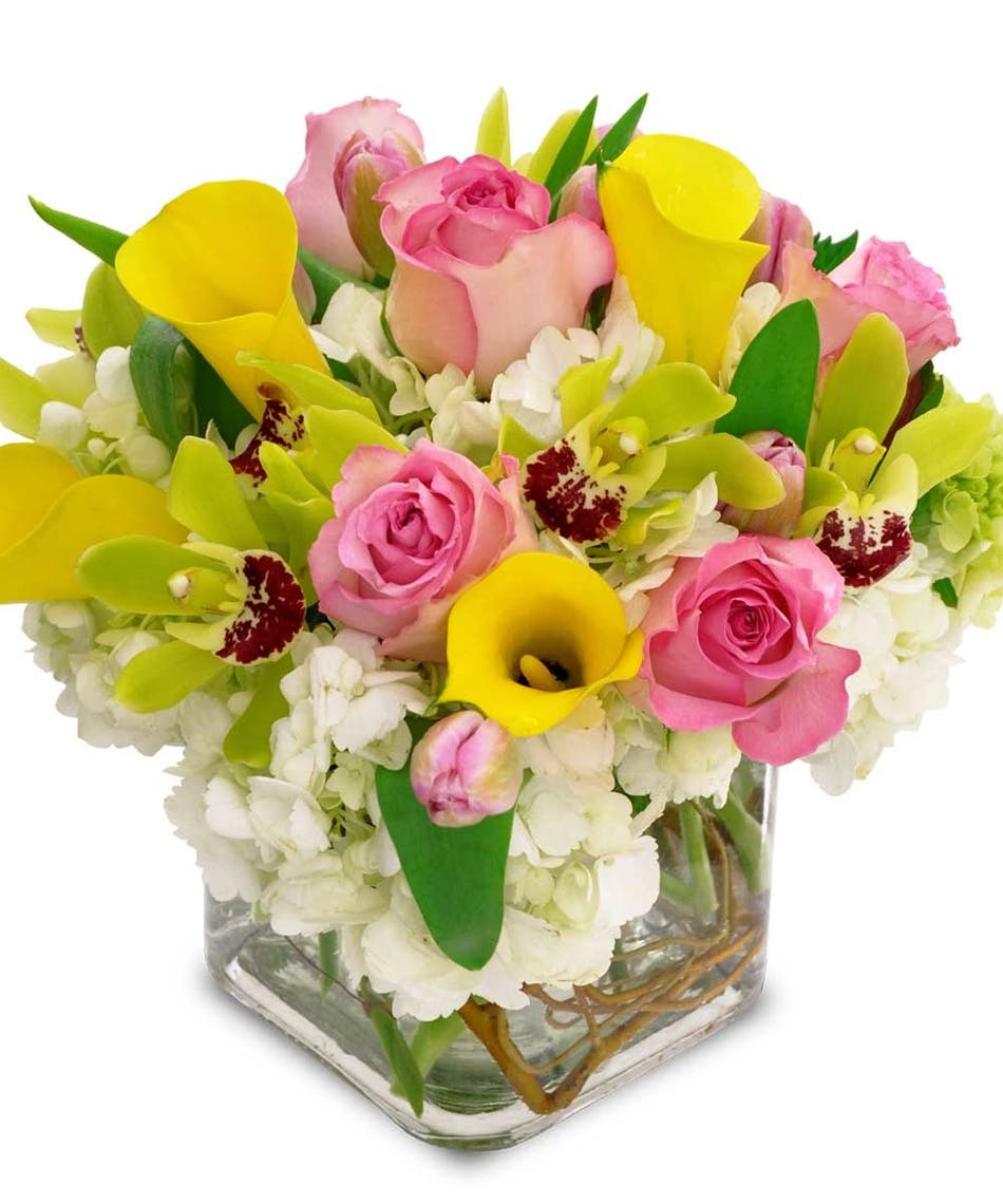 Spring days available same day flower delivery to derby shelton spring days available same day flower delivery to derby shelton ct new york city line florist trumbull ct and bridgeport flowers mightylinksfo