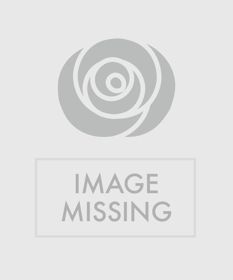 Enchanted Lilies Available Same Day Flower Delivery To