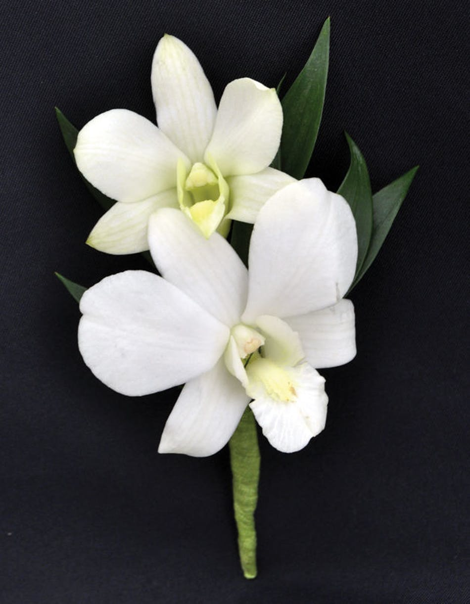Dendrobium white orchids boutonniere prom corsage dendrobium white orchids boutonniere w babys breath and greenery mightylinksfo
