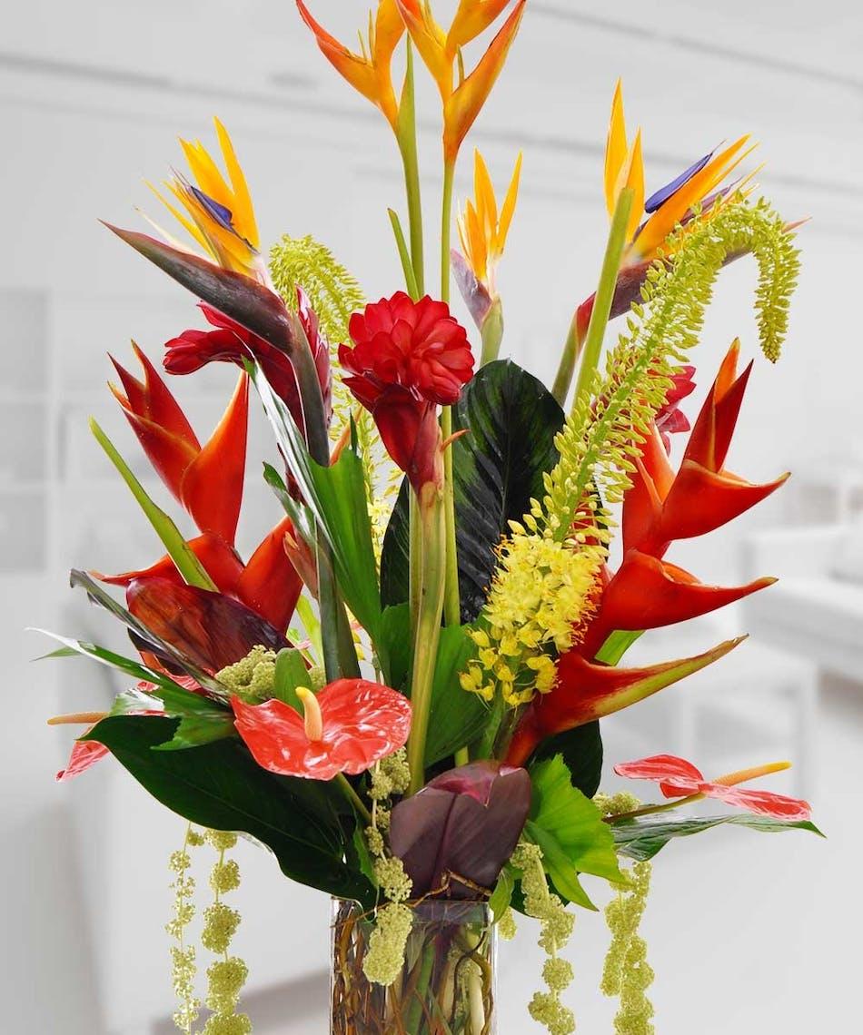 Shop Silk Bird Of Paradise And Anthurium Tropical: Birds Of Paradise
