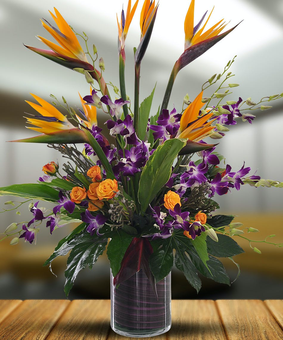 Orchids in Paradise - Available Same Day Flower Delivery to Derby ...